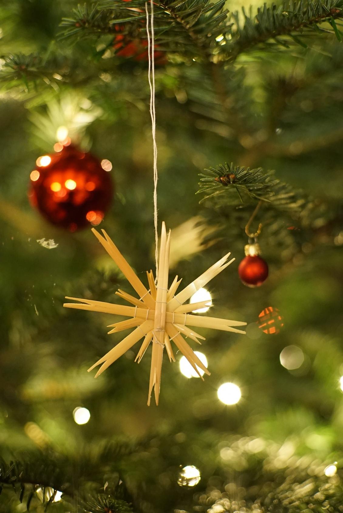 En julhälsning från Eskilstuna Guif