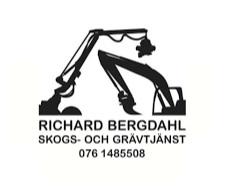 Bergdahl